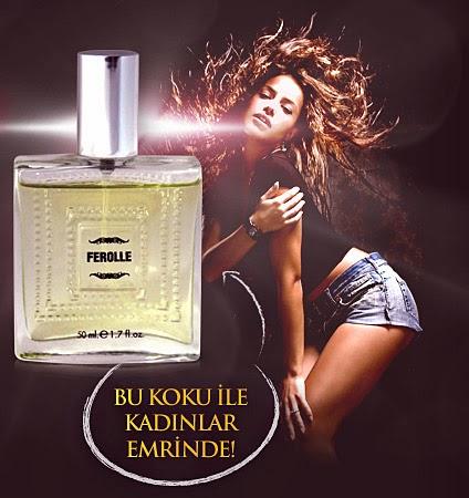 http://www.ferolle.com/?ref=1606