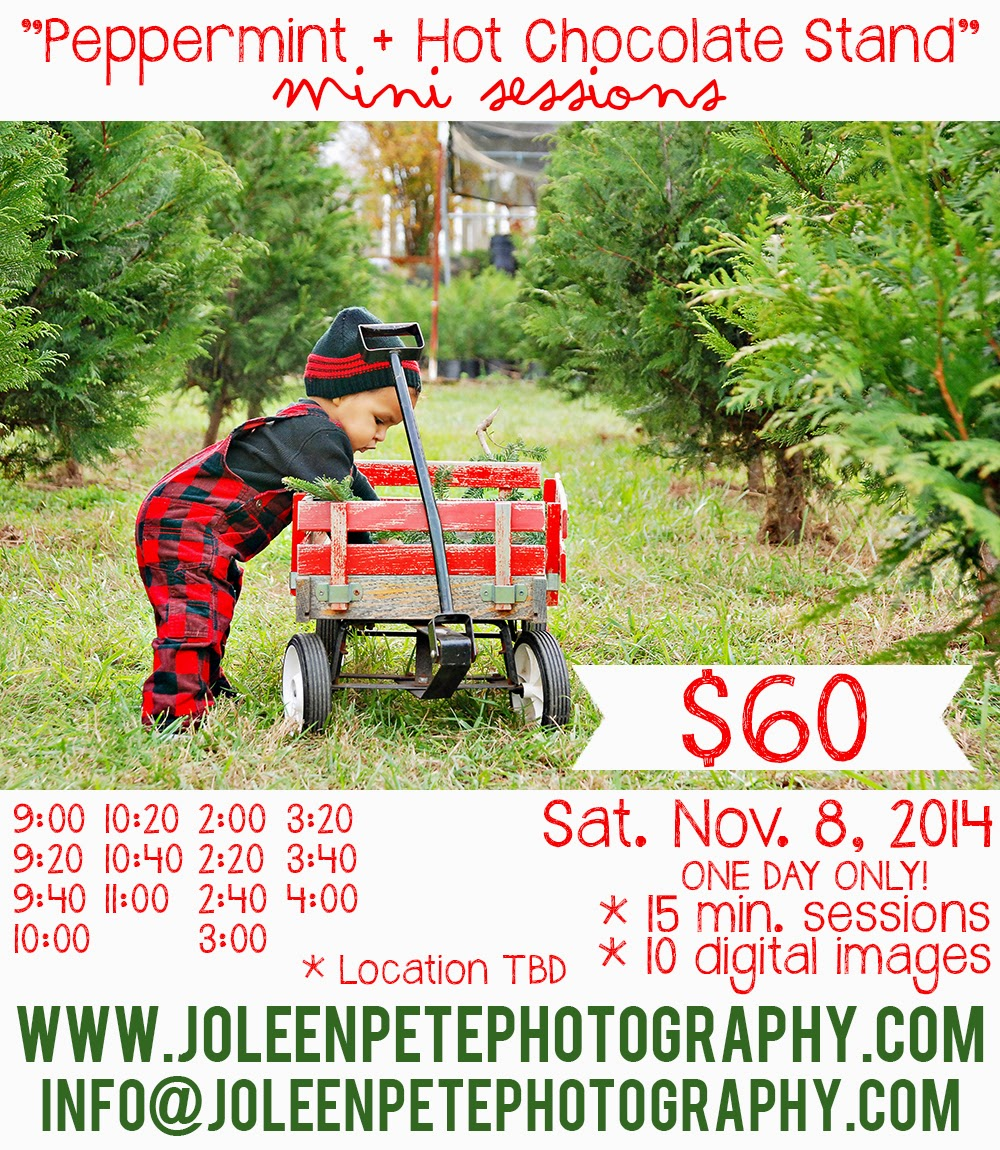 Love, Joleen: Peppermint + Hot Chocolate Stand Mini Sessions