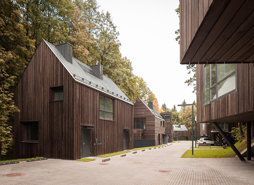 Residential wooden houses in the Lithuanian Reserve