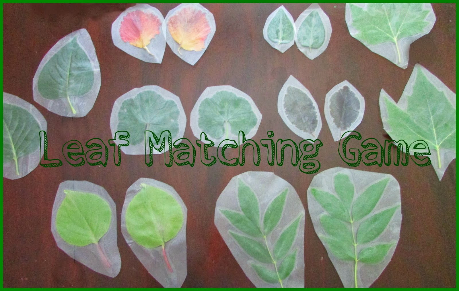 How to make the leaf matching game