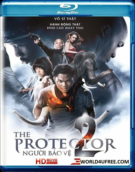The Protector 2 2013 Dual Audio BRRip 480p 150mb HEVC x265