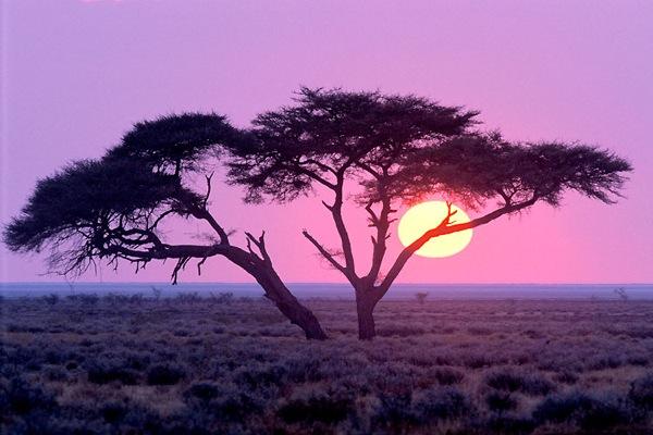 خلفيات غروب الشمس , موقع جزيرة خيال