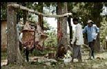 FOTOS: UGANDA 2010