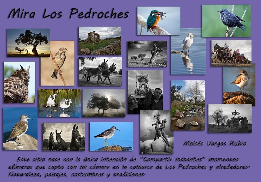 Mira Los Pedroches