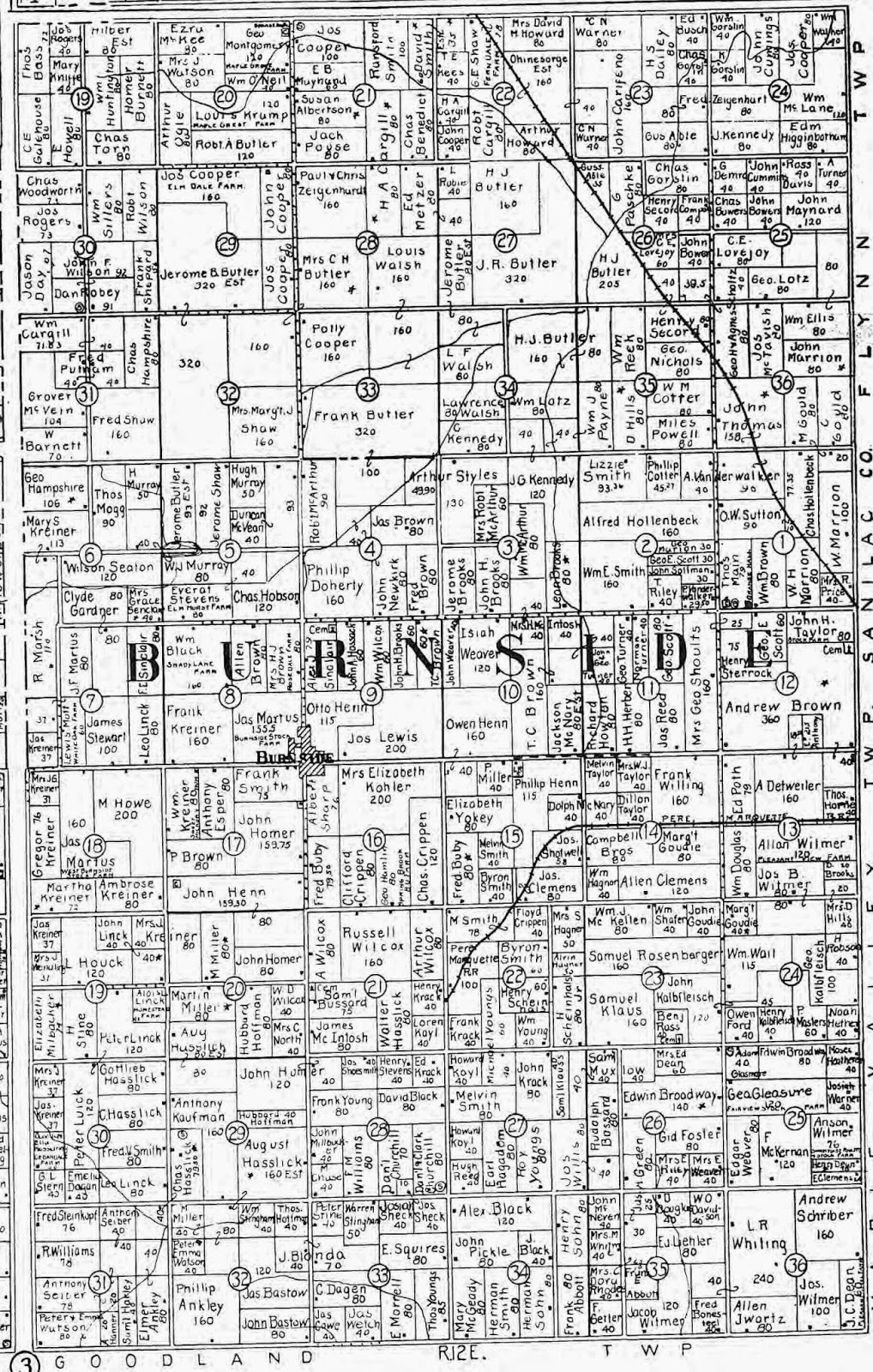 Climbing My Family Tree: 1915 Land Record for Burnside Township Michigan