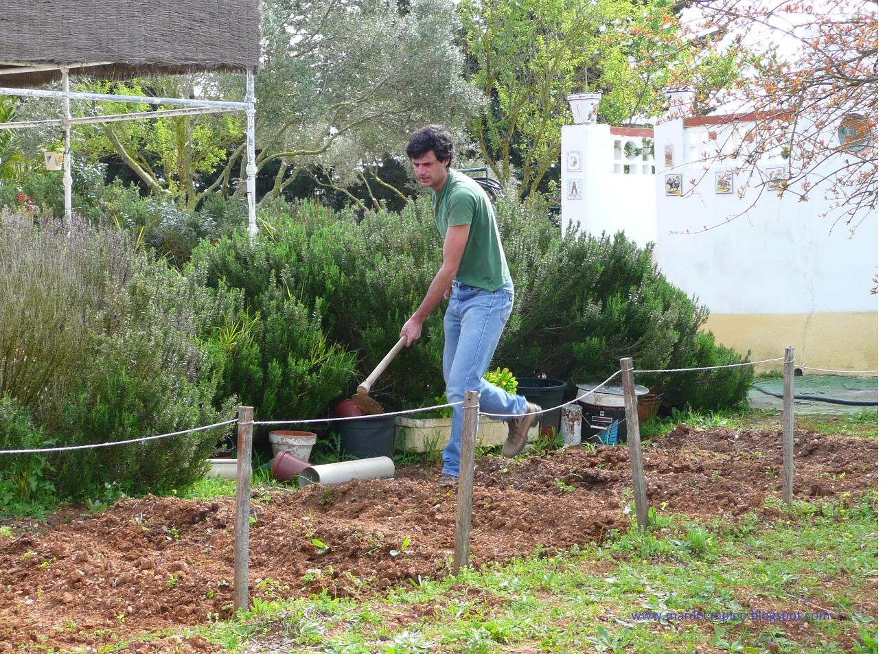 Entre mares blog mar de perfiles auxiliar de viveros y for Trabajo jardinero