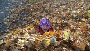 Det är kul med löv,