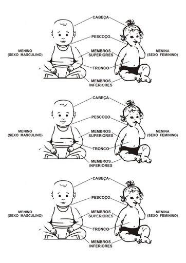 T  Tulo  Atividades O Corpo Humano Parte 2