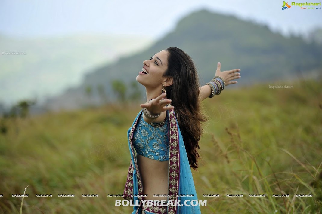  Tamanna Saree HD Wallpapers