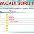 5.Sınıf Türkçe MEB Yayınları Çalışma Kitabı 145.Sayfa Cevapları