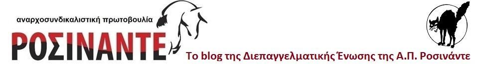 Το blog της Διεπαγγελματικής Ένωσης της Α.Π Ροσινάντε