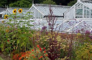 Victorian Greenhouses