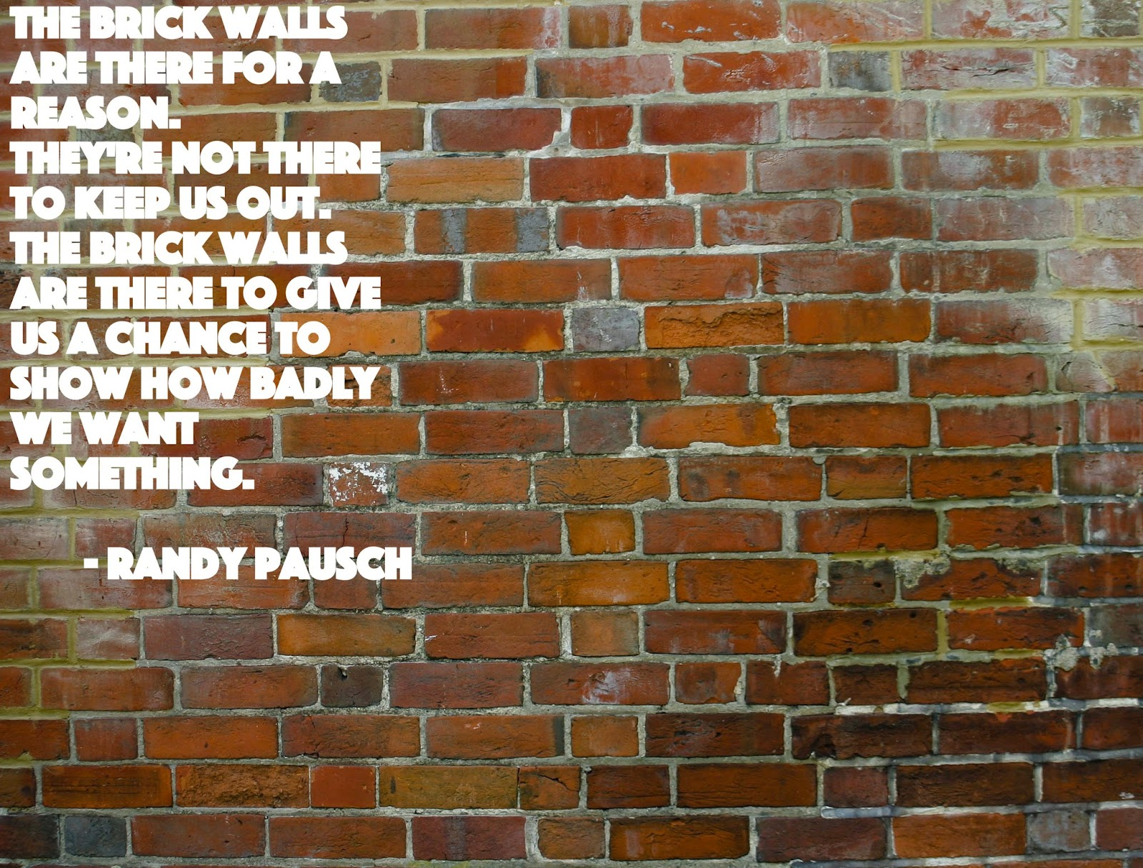 Quotes About Hitting a Brick Wall The Brick Walls Are There For