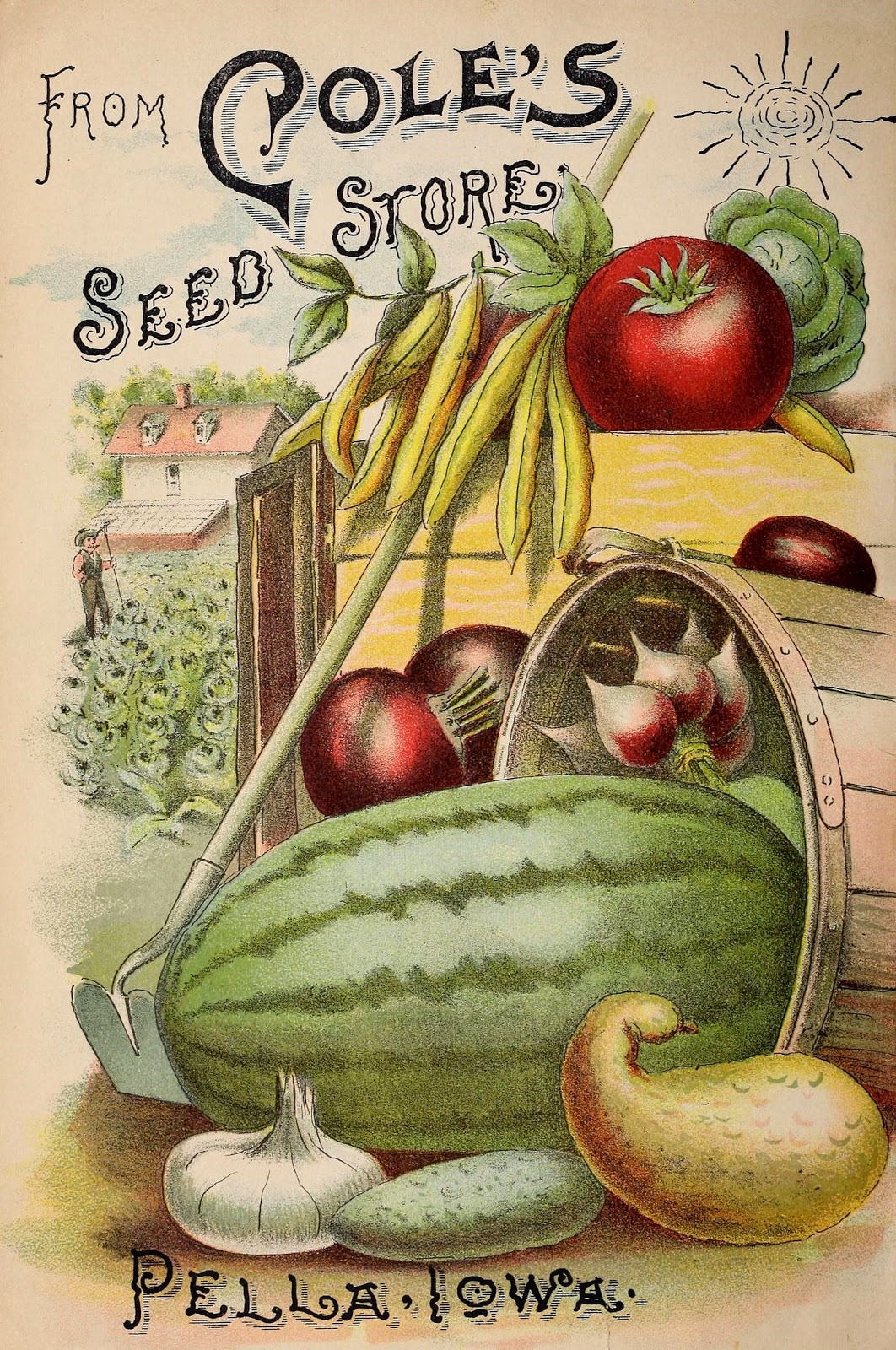 from the bhl seed and nursery catalog collection