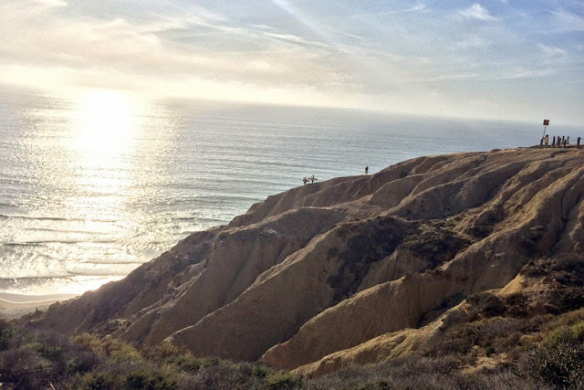 torrey pines state park surfers
