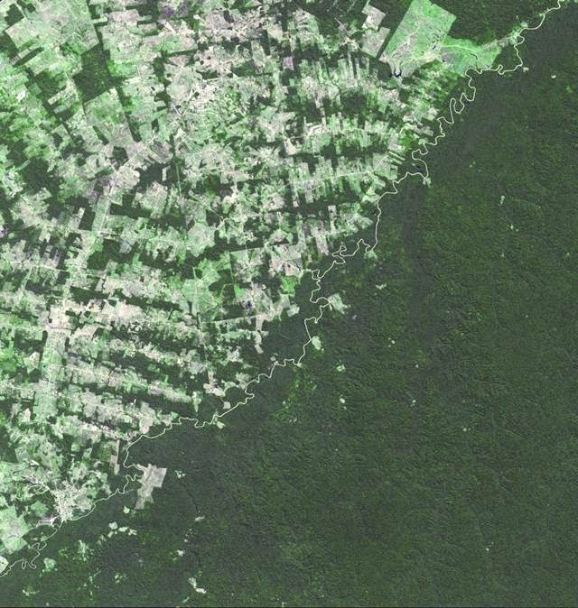 This shocking border shows the different levels of rainforest protection in the country.