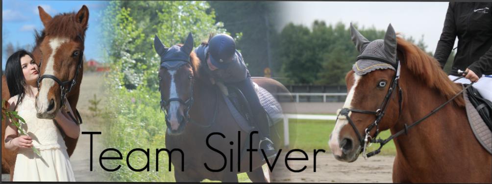Team Silfver