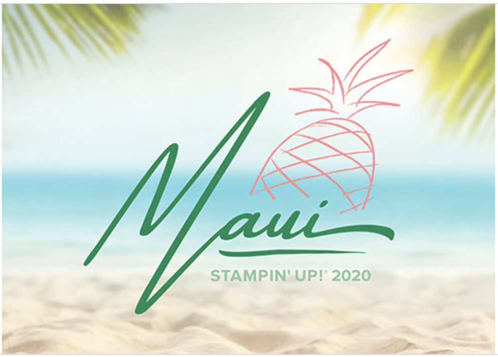 Incentive Trip Earned - Maui 2020