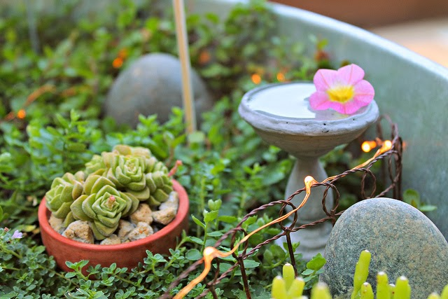 Hens & Chicks, Birdbaths & Fairy Lights at A Cuppa Tea With Me