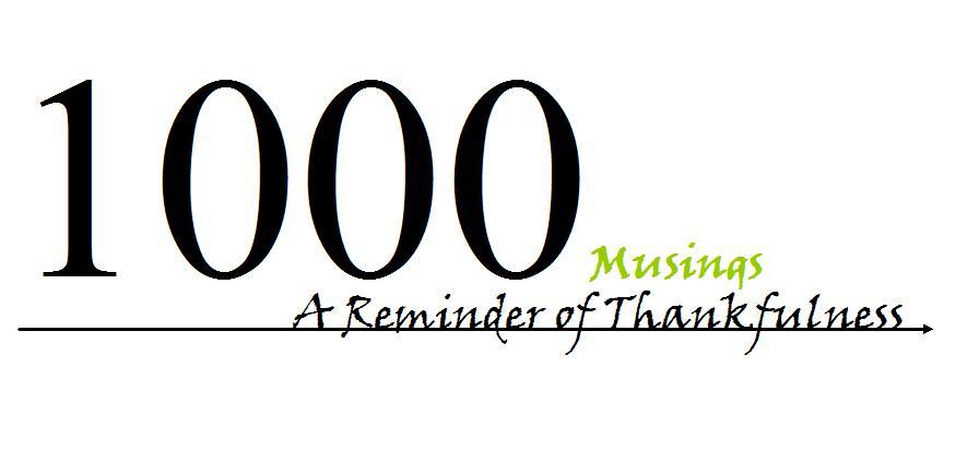 1000 Musings