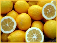 lemon_suppliers