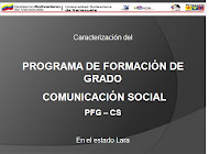 PFG COMUNICACIN SOCIAL