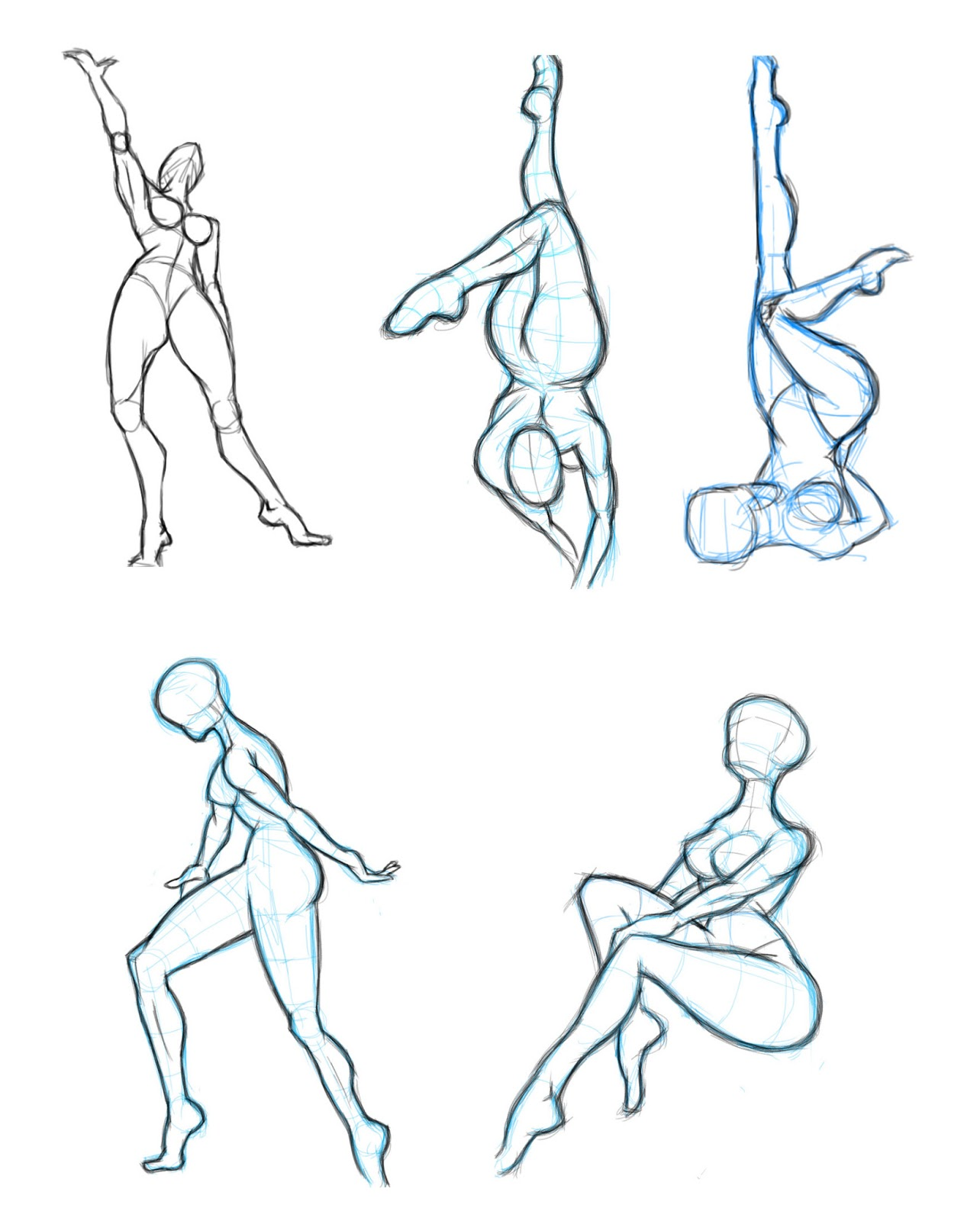 Some anatomy studies...With iPad and Procreate again ~ Dwayne ...