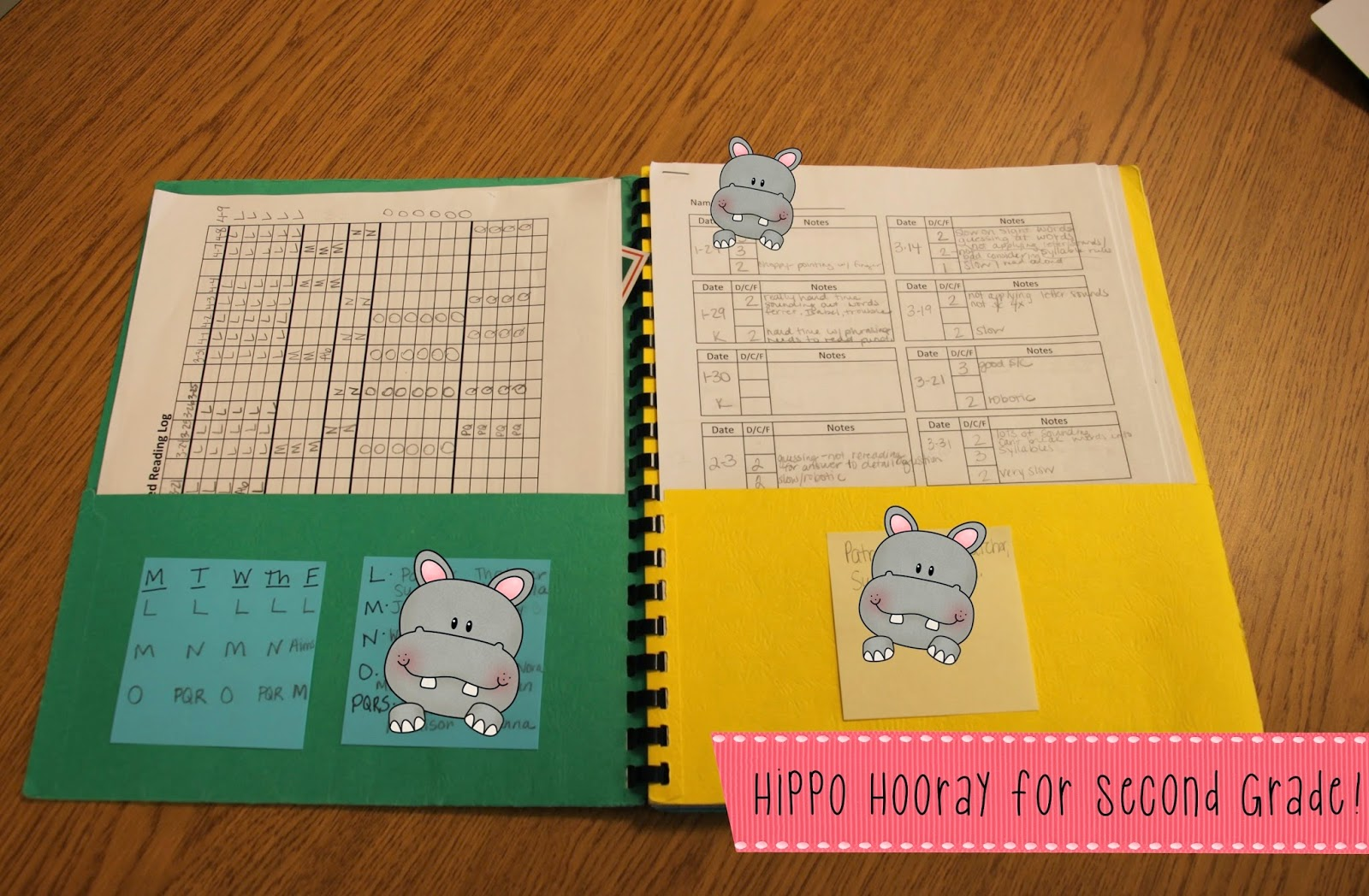 Guided Reading Lesson Planning And Note Taking Hippo Hooray For