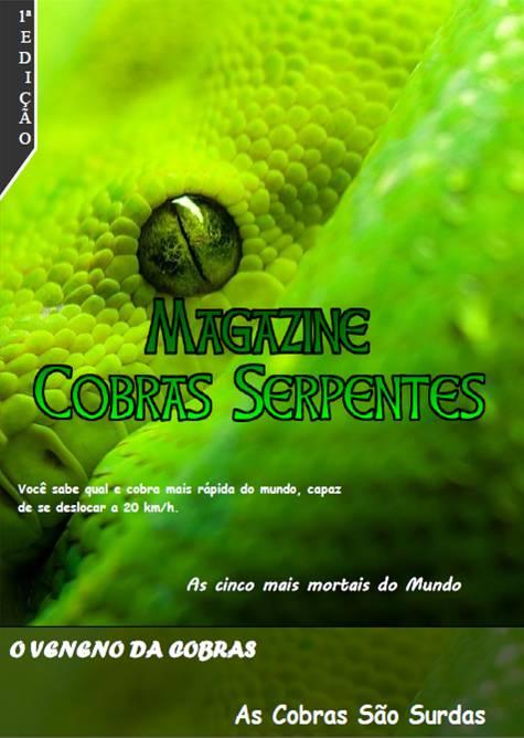 Magazine 1ª Edição