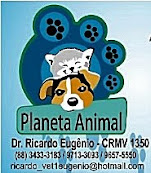 CLÍNICA VETERINÁRIA - PLANETA ANIMAL / (88) 997163655