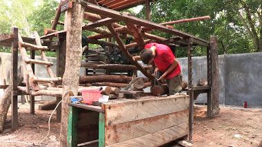 Enrichment in progress in the small enclosure