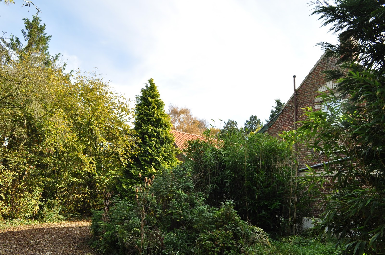 Jardin de la sauvagine 2017 octobre 2015 for Jardin octobre 2015