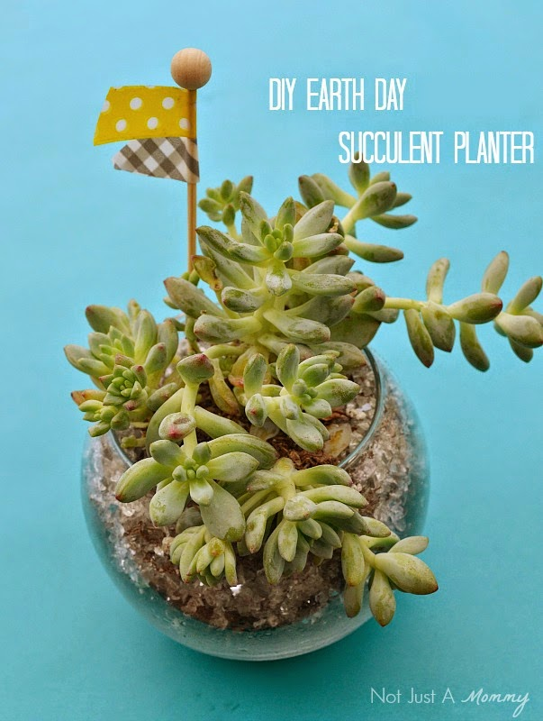 Earth Day DIY succulent planters