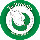 ♥ Blog amigo de Te Protejo ♥