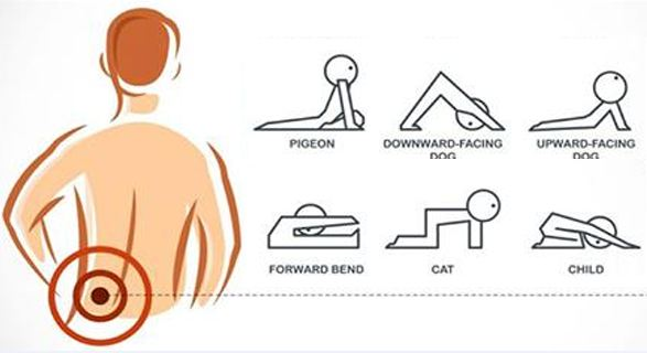 exercises-for-lower-back-pain-relief-600x320.png