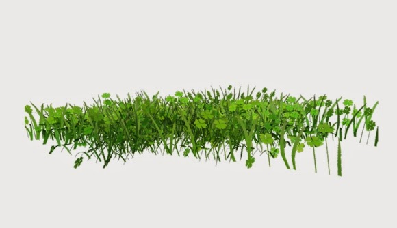 20 Plants Stock Photo High Resolution