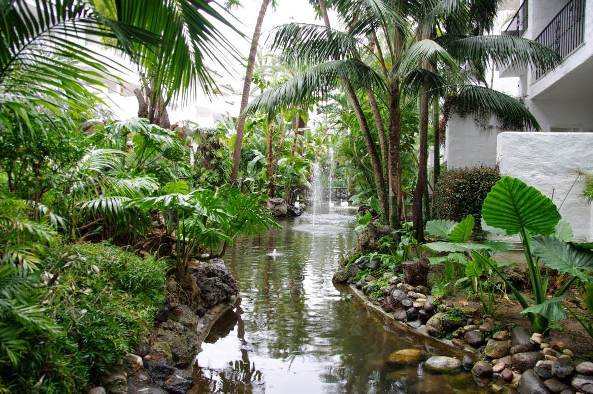 Jos antonio del ca izo perate for Hotel jardin botanico