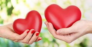 pelajaran kisah cinta dalam kehidupan