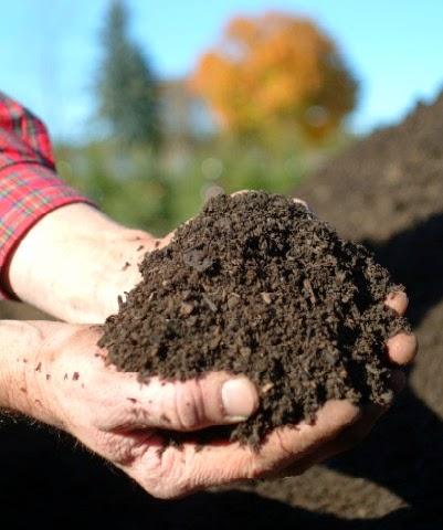 Bagaimana Cara Membuat Kompos sederhana