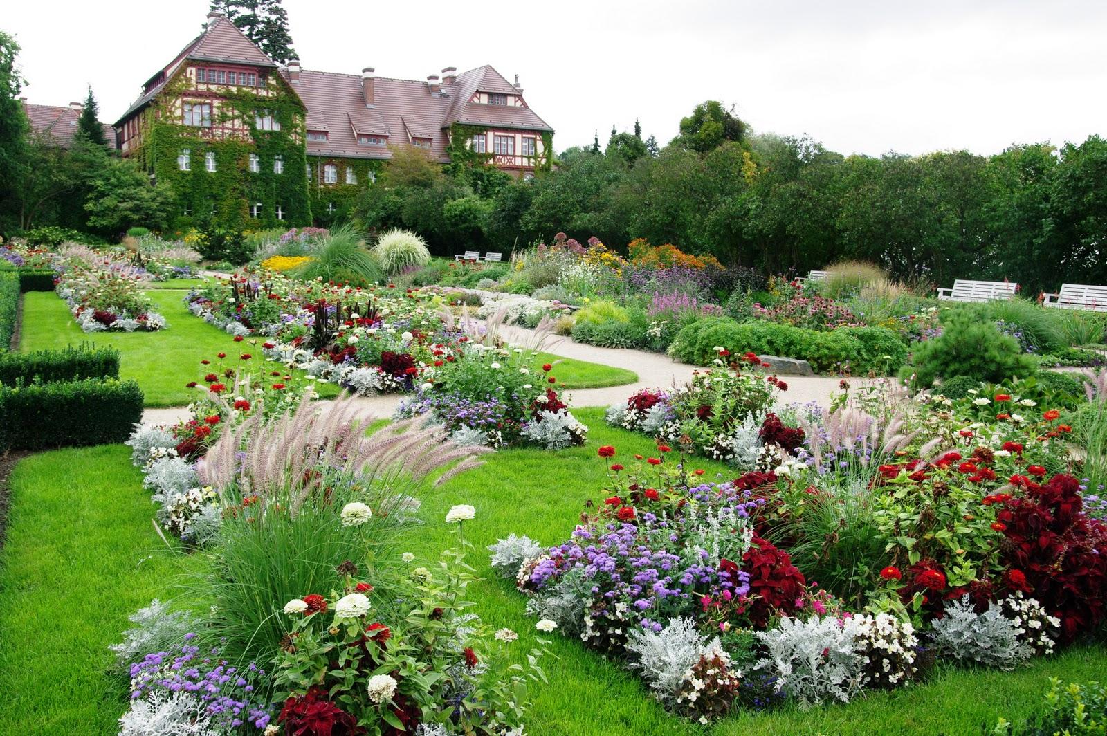 Le jardin boultois pas de panique au jardin for Jardin extraordinaire