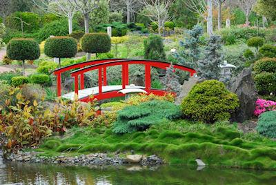 Jardín japonés - Japanese garden - Plantas y Flores