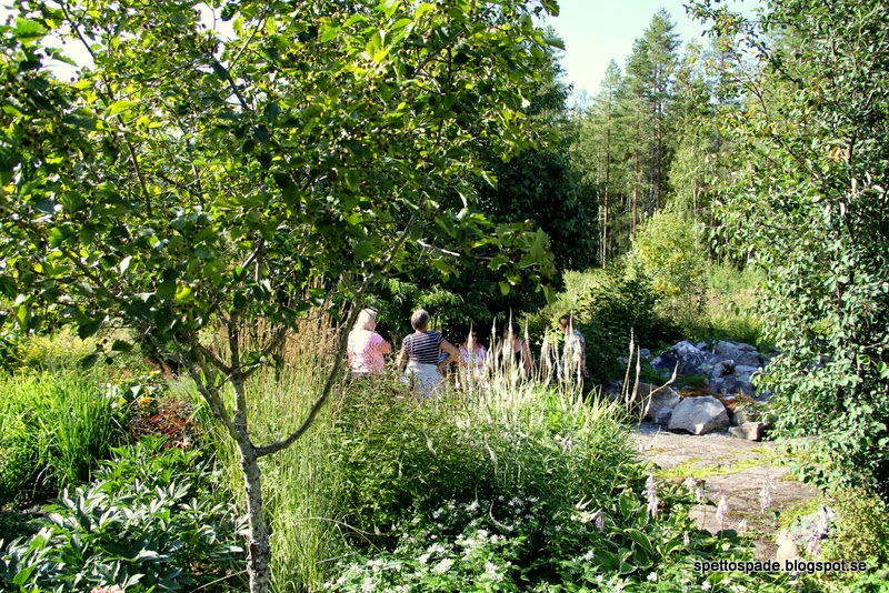 Kalix Trädgårdsamatörer