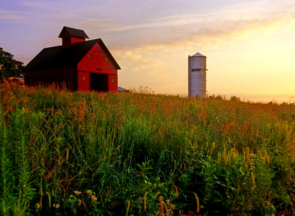 Cool Barn Wallpapers Pack Download   FLGX DB