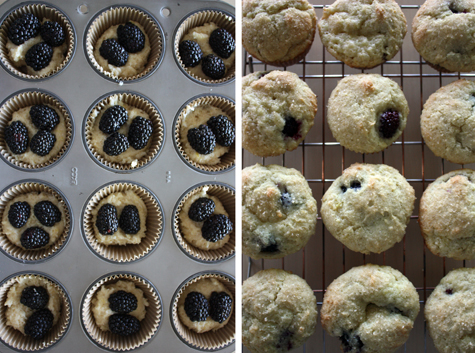 Sloe Gin Fizz: Lemon Ricotta Blackberry Muffins