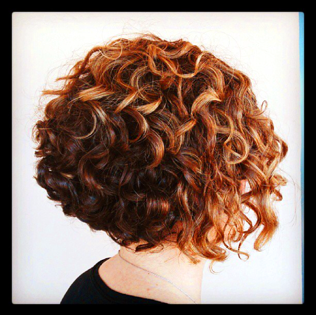 Permed Stacked Bob Haircut Photos   hairstylegalleries.com