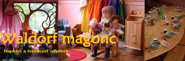 WALDORF MAGONC