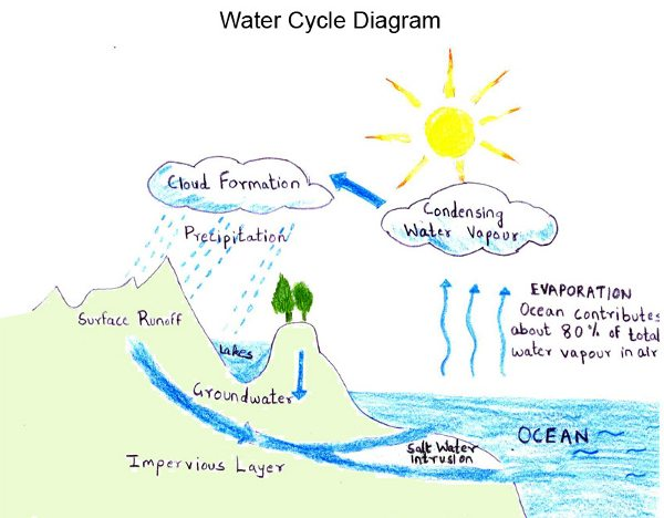 cycle  water cyclethe water cycle is a natural cycle and therefore it is out of our control