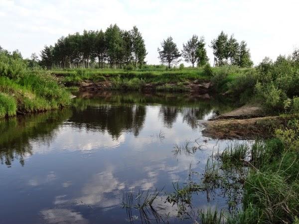 пруд виноградово рыбалка