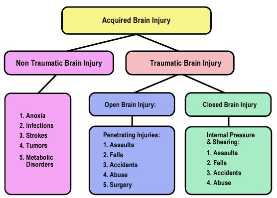 traumatic brain injury thesis