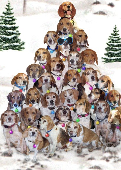 beagle christmas tree - Christmas Beagle